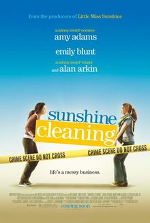 Thumb 2x sunshine cleaning